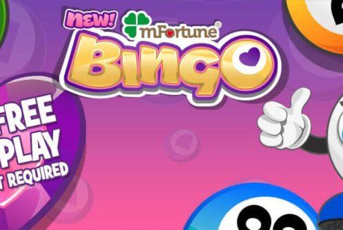 mFortune bingo app - full playing guide