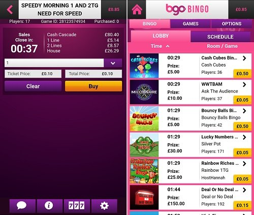 How to play on the bgo bingo app