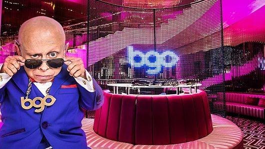bingo app from bgo