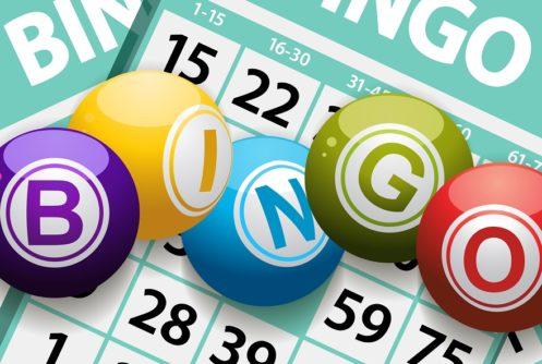 new bet365 bingo mobile app
